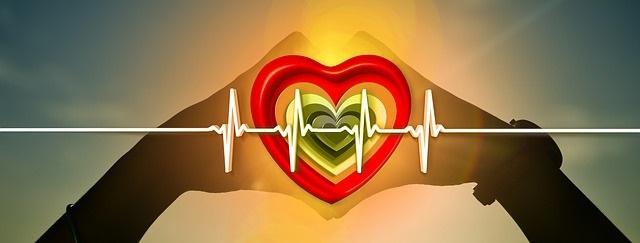La riduzione di proteine e aminoacidi a catena ramificata migliora il metabolismo e la salute